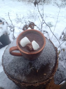 Warm Winter Treat - Velvety Vegan Hot Chocolate